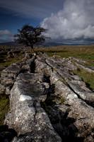 Winskill Rocks, Yorkshire Dales (1)